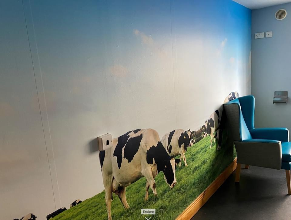 care home wall murals